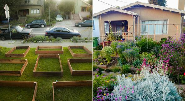 60 days permaculture